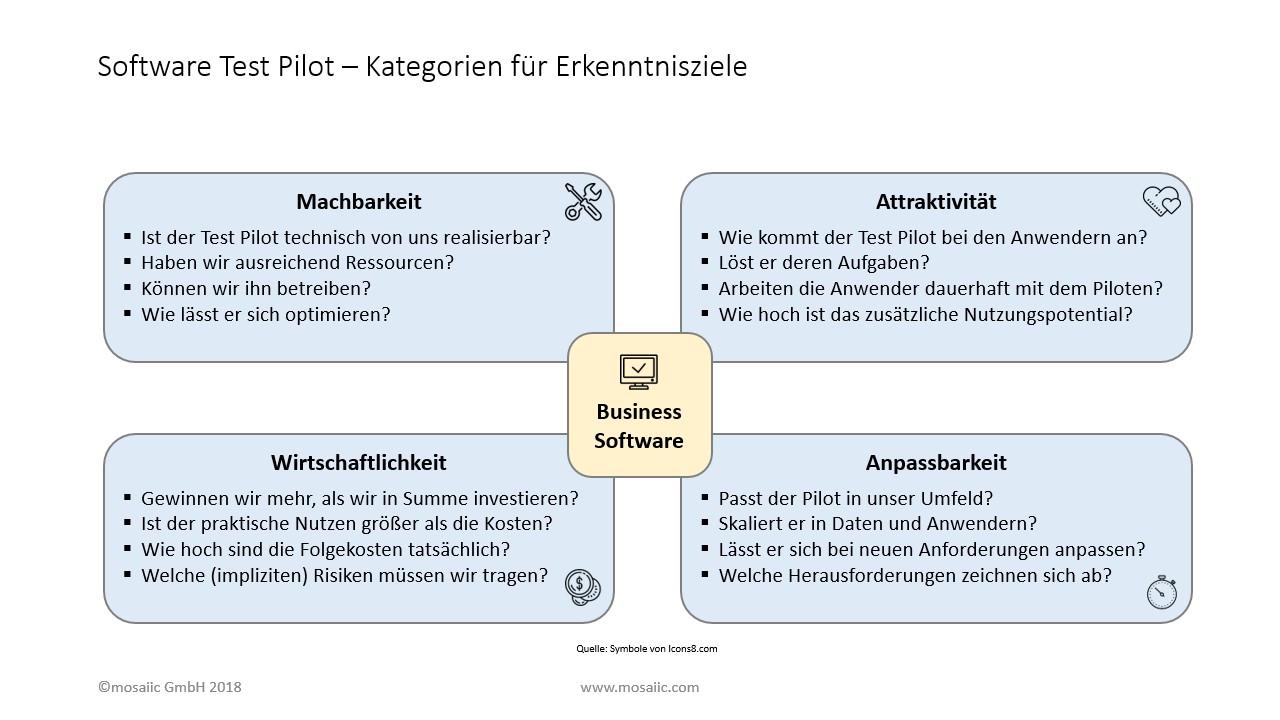 Software Test Pilot – Kategorien für Erkenntnisziele